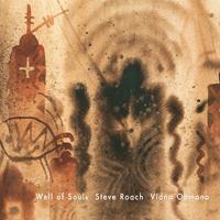 Vidna Obmana, Steve Roach - Well Of Souls - обложка