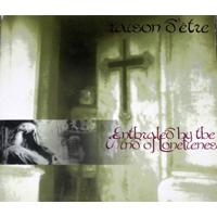 Raison D'Etre - Enthraled By The Wind Of Lonelienes - обложка