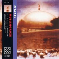 Muslimgauze - Citadel - обложка