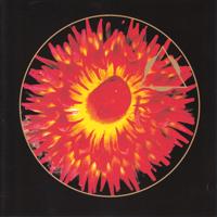 Tetsu Inoue - Organic Cloud - обложка