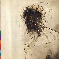 Peter Gabriel - Passion - обложка