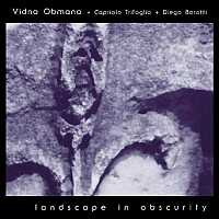 Vidna Obmana - Landscape in Obscurity