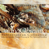 Vidna Obmana - Subterranean Collective - обложка