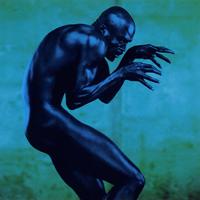 Seal - Human Being - обложка