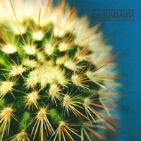Les Jumeaux - Cobalt - обложка