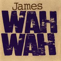 James - Wah Wah - обложка