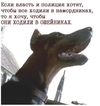 Намордники-ошейники